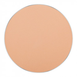 FREEDOM SYSTEM MATTIFYING PRESSED POWDER STAGE SPORT STUDIO NF icon